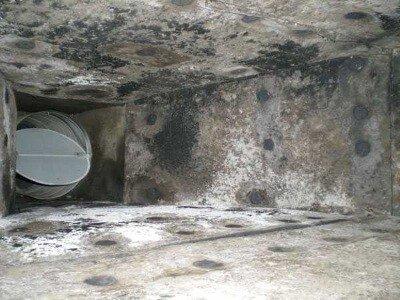 очистка и дезинфекция систем вентиляции организации